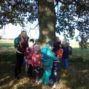 Včeličky - Badatelská vycházka - stromy